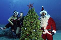 MDA Santa Dives