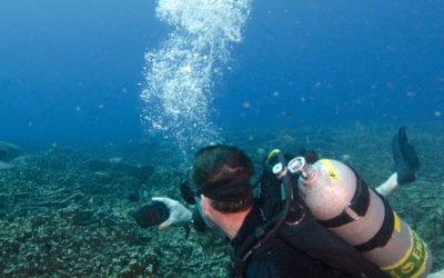Diving Gab Gab II