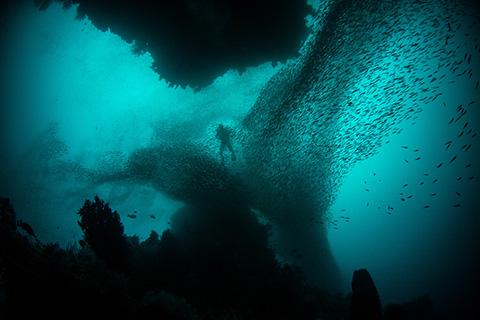 Palau Advanced